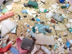 NOAA'S RESPONSE AND RESTORATION BLOG :: Where are the Pacific Garbage Patches Located?