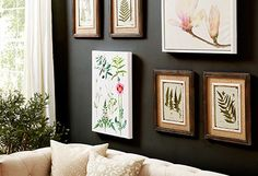 The Botanical Exhibit  Plant-Inspired Prints & Wall Decor  Whether you're updating the entryway or sprucing up the sunroom, this botanical collection of artwork and accents keeps your style abloom.