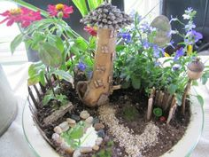 Fancilicious Fairylands: New Fairy Gardens