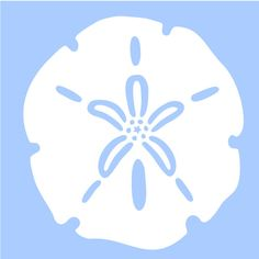 "SAND DOLLAR stencil marine sea ocean stencils background pattern template templates craft scrapbook new 6""x 6"""