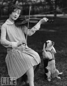 Black & White | music | mans best friends | violin | vintage | LIFE magazine | strings | ears | funny | quirky | dog | www.republicofyou.com.au
