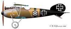 Johannisthal Eagle: The Albatros D.III & D.V/Va