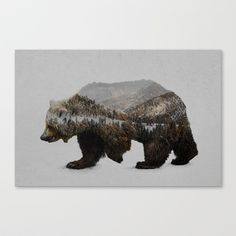 The+Kodiak+Brown+Bear+Canvas+Print+by+Davies+Babies+-+$85.00