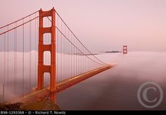 San Francisco, California, Golden Gate Bride from Marin Headlands. © Richard T. Nowitz / age fotostock - Stock Photos, Videos and Vectors Places Around The World, Around The Worlds, Stock Pictures, Stock Photos, Golden Gate Bridge, Photo Library, Marines, The Good Place, San Francisco