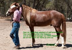 Elizabeth Graves - Gaited Horse Clinician. See her at the Expo March 20-22, 2015