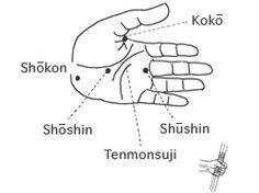 Les points clé du tenouchi