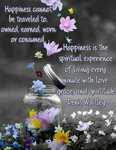 Happiness cannot be traveled to, owned, earned, worn or consumed. Happiness is the spiritual experience of living every minute with love, grace, and gratitude.' Denis Waitley #happiness #happinessquotes #quotes #wisewords #life #quotestolive #wordstoliveby #encouragement #confidence #traveled #owned #cannot #earned #consumed #truestory #truewords #truth #spiritual #experience #living #livelife #minute #love #grace #gratitude #hope #faith #strength #flowers #google Wisdom Quotes Funny, Words Of Wisdom Quotes, Happy Quotes, Happiness Quotes, Morning Greetings Quotes, Morning Quotes, Evening Greetings, Goeie Nag, Goeie More