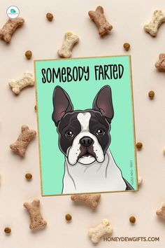 Are you a pet mom to a Boston Terrier? What better way to accentuate your space with ornaments featuring your beloved fur baby like some cute fun dog magnets. Having a few adorable and funny dog magnets for refrigerator will surely brighten up your day the same way your puppy does. Modern Decor, Rustic Decor, Home Decor Kitchen, Cheap Home Decor, Funny Dogs, Best Dogs, Fur Babies, Boston Terrier, Magnets