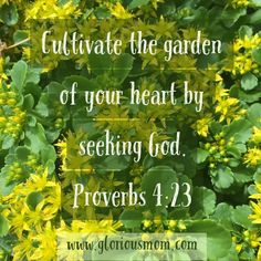 garden of your heart