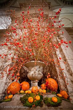 Add your own special twists to our fall entertaining tips and products to throw a spectacular fall dinner party, your guests won't soon forget! Mabon, Thanksgiving Decorations, Halloween Decorations, Fall Halloween, Vintage Halloween, Fall Containers, Succulent Containers, Container Flowers, Container Plants