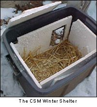 Outdoor Cat Shelters - Keep outside cats warm, safe and dry by providing them with year-round shelter.