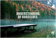 Everything that irritates us about others can lead us to an understanding of ourselves. - Carl Jung