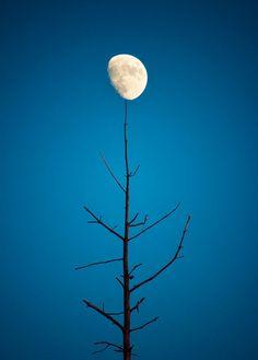 balancing the moon