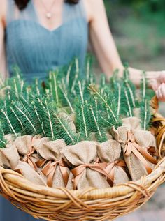 This bride and groom gave guests baby pine trees to plant. Ellen Westcott of Westcott Weddings put the bags together.
