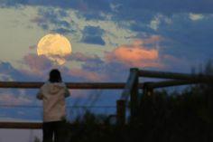 "En fotos: la ""superluna"" que maravilló al mundo  Una mujer contempla la luna en Sidney, Australia. Foto: Reuters"