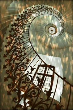35 Grand Staircase Inspiration - Space for staircase is decided based on the whole size of the house. Yes, tiling the staircase is a remarkable method to give them a great appearance. by Joey Stairs And Staircase, Take The Stairs, Grand Staircase, Staircase Design, Spiral Staircases, Beautiful Architecture, Beautiful Buildings, Art And Architecture, Architecture Details