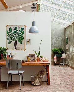 decoracion-laminas-botanica13.jpg (480×600)