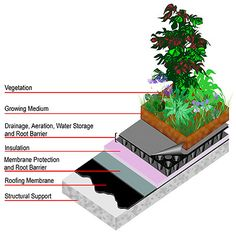 Green Roof by lid-stormwater.net #Green_Roof #lid_stormwater