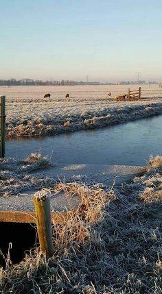 Holland winter