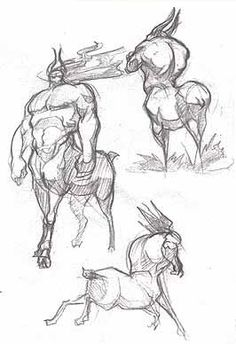 centaur sketches by davidsdoodles on DeviantArt Character Concept, Character Art, Concept Art, Fantasy Creatures, Mythical Creatures, Reference Manga, Disney Art, Disney Pixar, Creature Concept