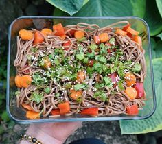 Soba Noodle Salad w/ carrots and bell pepper tossed in a homemade sauce {rice vinegar, maple syrup, tamari, chili sauce, ground ginger, sesame oil}, then topped w/ cilantro and sesame seeds