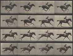 | DANIELLE | This is a very early example of graphic sequence. The famous work by Eadweard Muybridge entitled 'Horse in Motion' (1886) depicts 16 frames of a jockey riding a horse. Reading the work from left to right, we see the different movements the horse and jockey make while racing. In contrast to the example with the diver, this work was taken with a series of cameras in a row, each connected to tripwires so that it would trigger a picture as the horse ran past.