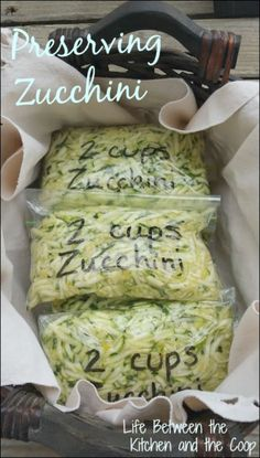 Preserving Zucchini One of the things I love about having a garden is the harvest in the fall. One of my favorite things that we get from our garden is zucchini. Mere words cannot express how much our family loves zucchini! As it gets later in the fall, Zuchinni Recipes, Vegetable Recipes, Shredded Zucchini Recipes, Zucchini Noodle Recipes, Zoodle Recipes, Large Zucchini Recipes, Veggetti Recipes, Yellow Squash Recipes, Summer Squash Recipes