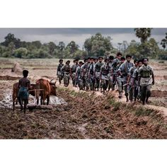 Tamil Tigers march in Sri Lanka, 1995.   It would be hard to find a contrast which stands out in sharper relief than warriors marching by a farmer quietly plowing his field. The pastoral juxtaposed with the martial reminds us of the dichotomy of the many facets of the human condition.