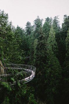 heidigrainger: chrisamat: Capilano Canyon BC -...
