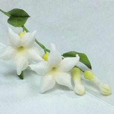 Sugar flowers ...