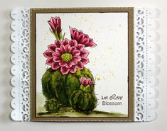 Card created with the Scrumptious Succulents and Blossom and Grow stamp sets from Chocolate Baroque. Beads Direct, Baroque Design, How To Make Paper, Embossing Folder, Blank Cards, Paper Cutting, Paper Flowers, Cactus, Card Making