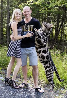 Family photo with our big silver charcoal bengal cat! More beautiful bengal cats and kittens at www.wildnsweetbengals.com Happy April fools day! ;)