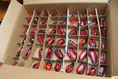 How To Paint Rocks: Painted Rock Lady Bugs and Ladybirds. Crafts The painted rocks packed in a home made box safely http://viking305.hubpages.com/hub/How-To-Paint-Ladybird-Stones-Painted-Ladybirds-on-Small-Pebbles-painting-acrylic-sell-craft-fairs