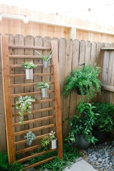 Ladder vertical garden…the perfect DIY project for anyone with a small backyar… Ladder vertical garden…the perfect DIY project for anyone with a small backyard but who still wants to garden. Small Patio Ideas On A Budget, Budget Patio, Diy Patio, Patio Wall, Backyard Ideas On A Budget, Vertical Garden Diy, Vertical Gardens, Narrow Garden, Diy Terrasse