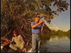 Pesca & Companhia - 1995 c/ Almir Sater no Rio Negro - YouTube