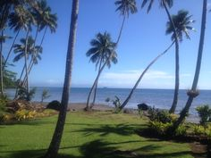 This is where I went on my honeymoon with my husband - Beqa Island in Fiji! It was extraordinary! Lalati Resort! GO !