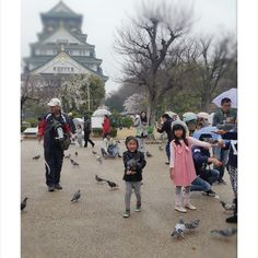 @funkybukkyo our #kids #kidstyle #akirastyle #osaka #osakacastle #travel #japan #pupuru #japantravel #wifirental