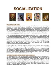 Excellent chart for socializing your puppy or adult dog! Service Dog Training, Service Dogs, Puppy Socialization, Socializing Dogs, Human Environment, Dog Items, Labradoodle, New Puppy, How To Introduce Yourself