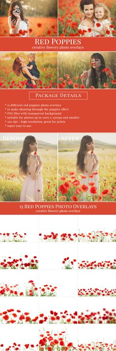 Shooting through the poppies effect – blurred foreground. Great for flowery pictures – kids & portraits, mini sessions etc. #poppies #poppiesoverlays #wildpoppies #redpoppies #photooverlays #brownleopard #overlays