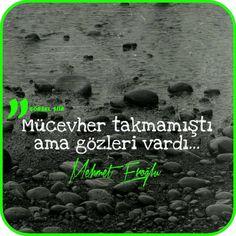 Mücevher takmamıştı ama gözleri vardı.   - Mehmet Eroğlu / Zamanın Manzarası…
