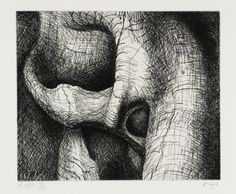Henry Moore OM, CH, 'Elephant Skull Plate XXV' 1970 Cross-hatching creates shadow and texture. Contour Drawing, Gesture Drawing, Henry Moore Drawings, Elephant Skull, Arte Tribal, Gun Art, A Level Art, Natural Forms, Natural Structures