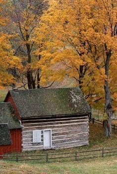1800's Pioneer Settler Cabin