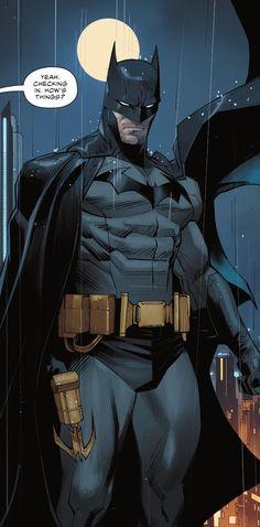 Batman Art, Batman Comics, Dc Comics, The Dark Knight Rises, Batman The Dark Knight, Batman Wallpaper, Batman Begins, Batman Universe, Comic Panels