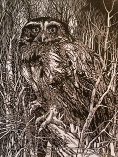 Winter Owl woodcut / Jack Coughlin | R.Michelson Galleries