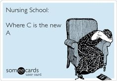 This is great. However you cannot get C's at our school for nursing-that is failing.