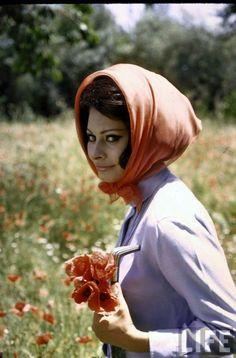 Sophia Loren photography by Alfred Eisenstaedt.