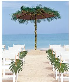 Walk down a palm tree lined aisle at your beach wedding#Tropical Wedding ... Wedding ideas for brides & bridesmaids, grooms & groomsmen, parents & planners ... https://itunes.apple.com/us/app/the-gold-wedding-planner/id498112599?ls=1=8 … plus how to organise an entire wedding, without overspending ♥ The Gold Wedding Planner iPhone App ♥