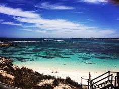 Rottnest Island Perth. One of the most amazing places I've been. Picturesque beauty. Blog link in Bio for more information. #rottnest #rottnestisland #perth #rottnestperth #westernaustralia #WA #travelblog #travelplans #travel #backpacker #sea #beach #bestbeaches #Australia #travelling #traveller #travelaustralia #travelgram #rottnestislandwa by duffellsdelights http://ift.tt/1L5GqLp