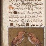 from  Kitāb al-Manāfi' al-Ḥayawān (The Book on the Usefulness of Animals)by the medieval Arab scholar Ibn al-Durayhim al-Mawṣilī (1312-1361)