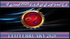 by m s Bakar Urdu Hindi Pisces Monthly Horoscope, Leo, February, Lion
